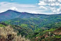 587-Vue sur le col vers O Cebreiro (1330m) (2)