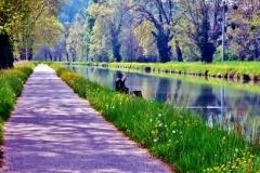 9-Canal du Tarn et  Garonne (2)
