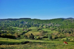 via-stevensonia-paysage-apres-monastier